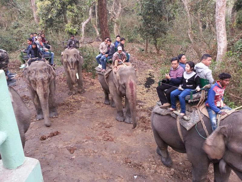 Meghalaya & Assam Tour